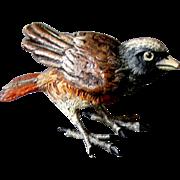 Excellent Vintage Miniature VIENNA BRONZE Cold Painted  BIRD
