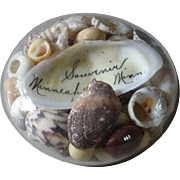 Vintage Sea Shell Souvenir Glass Paperweight from Minneapolis, Minnesota