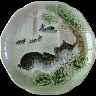 Antique French Majolica Bunny Plate Hautin & Boulenger