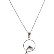 10K White Gold Dolphin Pendant and Chain