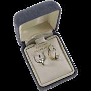 10K YG Lever Back Aquamarine Earrings