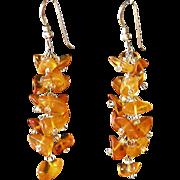 "Baltic Amber Earrings 2"""