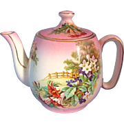 Royal Winton Grimwades Countess TeaPot Made In England