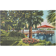 Shady Walk Country Home Lakes Tampa Florida NOS New Old Stock Vintage Postcard