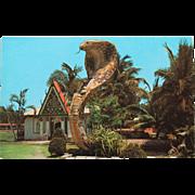Entrance to Miami Serpentarium Vintage NOS New Old Stock Postcard