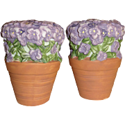 Pfaltzgraff Potted Flowers Salt and Pepper Shakers