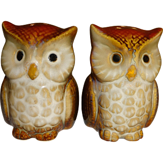 Fall Harvest Owl Salt and Pepper Shakers