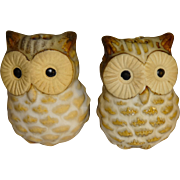 Pair of Mini Owl Salt and Pepper Shakers