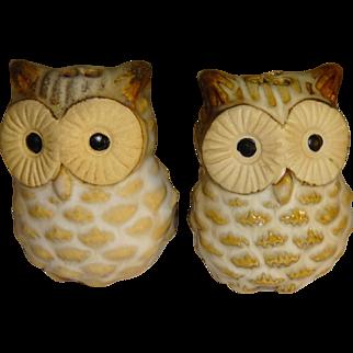 Pair of Mini Owl Salt and Pepper Shakers