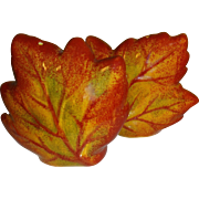 Fall Leaves Salt and Pepper Shakers
