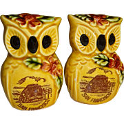 Souvenir Owl Salt and Pepper Shakers from San Francisco