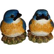 Fat Bluebirds on Nests Salt and Pepper Shakers
