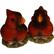 Fat Red Cardinals on Nests Salt and Pepper Shakers