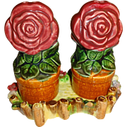Flower Pots in Tray Salt and Pepper Shakers - Made in Japan