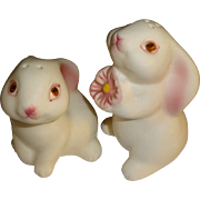 Avon Bunny Luv Salt and Pepper Shakers