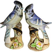 Enesco Blue Jay Salt and Pepper Shakers