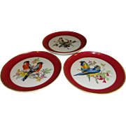 Kaiser W. Germany Porcelain Bird Coasters - Set of 3
