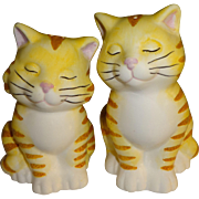 Striped Cats by Ganz Salt and Pepper Shakers