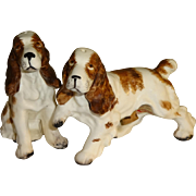 Ucagco Springer Spaniels Dog Salt and Pepper Shakers