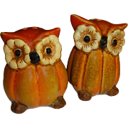 Owls with Pumpkin Bodies Salt and Pepper Shakers