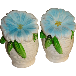 Blue Flowers in White Wicker Baskets Salt and Pepper Shakers