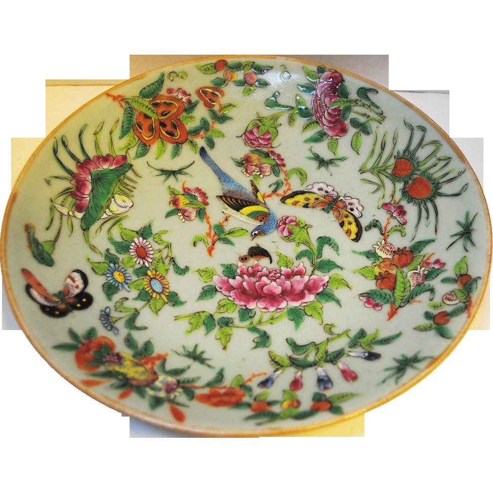 Chinese Porcelain Plates : Chinese porcelain tongzhi fencai enamel celadon plate from