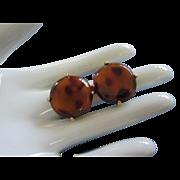 Tortoiseshell Brown Lucite Earrings