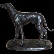 Bronze Sculpture of an Italian Greyhound Whippet, Unsigned