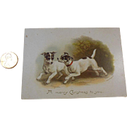 Vintage Christmas Card/Greeting/ Keepsake Raphael Tuck & Sons, London, Jack Russell Terriers, Playmates by Helena Mcguire, Artistic Series