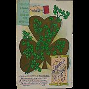 St Patrick's Shamrock From Erin Postcard Circa 1910-15