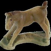 Wade Whimsie - 1956-59 Foal