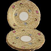 4 Shelley Chintz Plates