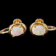 14K Oval Opal Cabochon Screw Back Earrings Yellow Gold