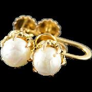 14K 6mm Pearl Claw Set Screw Back Earrings Yellow Gold