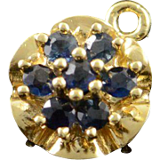14K 0.20 CTW Sapphire Cluster Pendant Yellow Gold