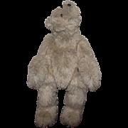 "Adorable Very Large OOAK Polar Bear ""Cody"" Artist Kristine Lambrix 24"" Hump On Back"