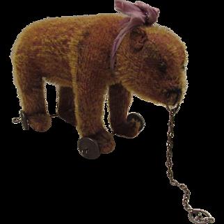 "Wonderful Old Steiff Teddy Bear On Wheels with Pull Chain 9"" Circa 1900's"