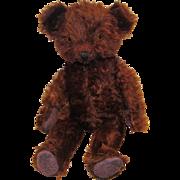 "Wonderful Vintage Rare German 14"" Mohair Teddy Bear Circa 1920's"