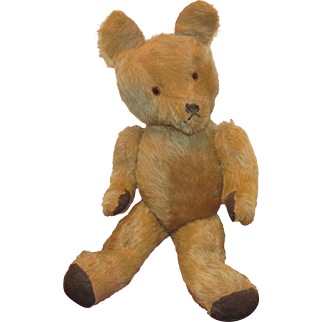 "Wonderful Large 21"" German Vintage Golden Mohair Bear With Long Snout Circa 1920's"