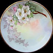 "Paul Putzki H.P. 8 1/4"" Pink & Yellow Wild Roses ""Gotham Austria"" Plate"