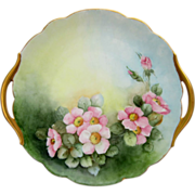 """Hand Painted 10 ¾"""" Wild Pink Roses Cake Plate- signed """"M.W. Dittoe"""""""