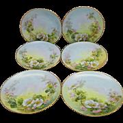Sherratt's Studio H.P. Six Plates with White & Pink Pastel White Roses (6)