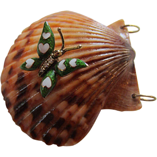 Large Natural Shell Pendant with Enamelled Butterfly