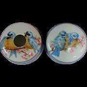 Antique Dresser of Vanity Set Blue Birds AK France