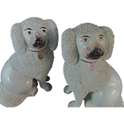 """Pair 7"""" Staffordshire King Charles Spaniels Dogs Pebbled Coat"""