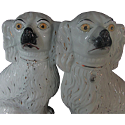 Pair 19th Century Antique Victorian Staffordshire King Charles Spaniels White - Red Tag Sale Item