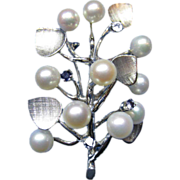Estate 14 Karat White Gold Akoya Pearl Bright Blue Sapphire Branch Design Pin