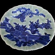 Japanese Antique Imari 伊万里 Sometsuke-Seiji Celadon Glazed Ozara Obaru- Zara Porcelain Platter