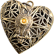 Steampunk Heart Locket Owl Necklace Owl Locket Working Compass Necklace