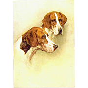 The Foxhound embossed dog Postcard
